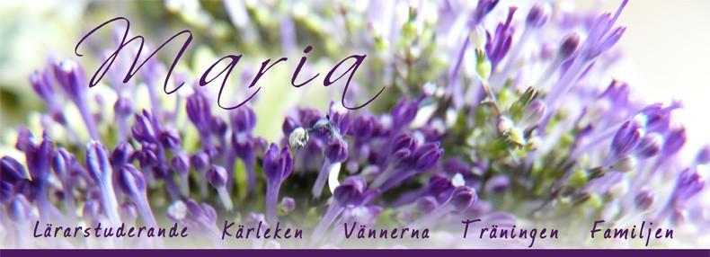 ]v[aria ♥
